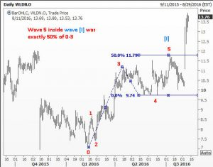 End of minor wave 5 in WLDN